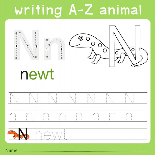 Illustrator of writing a-z animal n