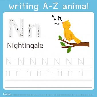 Illustrator writing a-z animal of nightingale