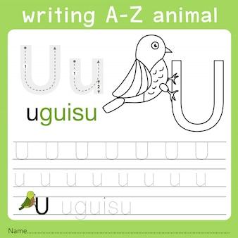 Illustrator of writing a-z animal u