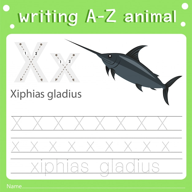 Illustrator of writing a-z animal x xiphias gladius