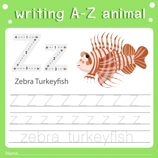 Illustrator of writing a-z animal z zebra turkeyfish