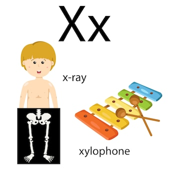 Illustrator of x vocabulary