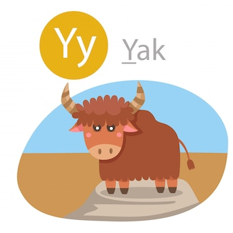 Illustrator of y for yak animal