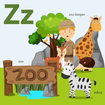 Illustrator of a-z set for z isolated