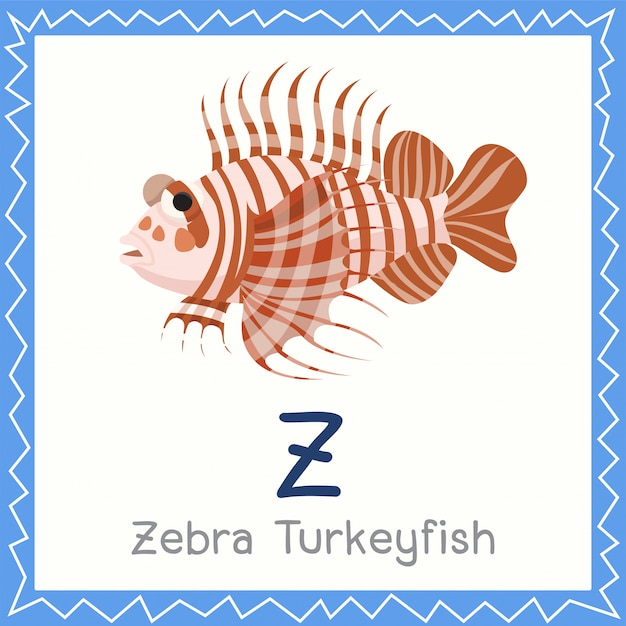 Illustrator of z for zebra turkeyfish animal
