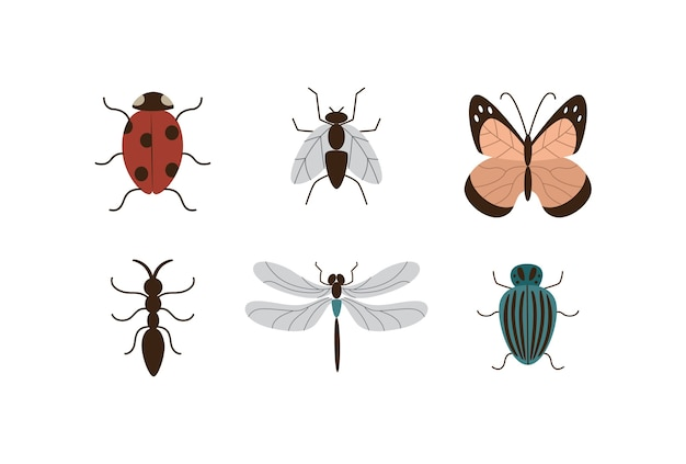 Images set of different insects and garden plants pests flat  isolated on white background. butterflies and bugs cartoon icons or symbols collection.