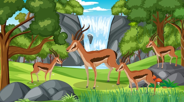 Impala group in forest at daytime scene with many trees