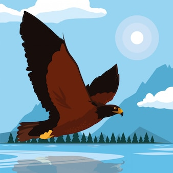 Imposing hawk bird flying in the landscape
