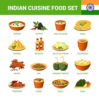 Set di cibo cucina indiana