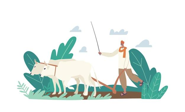 전통 의상 작업의 인도 농부 캐릭터. 소가 밭을 갈고 있는 시골 아시아 남자는 수확을 위한 토양을 준비합니다. 농장에 농업 노동자입니다. 만화 사람들 벡터 일러스트 레이 션