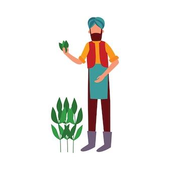 Индийский фермер стоит с листьями хлопка