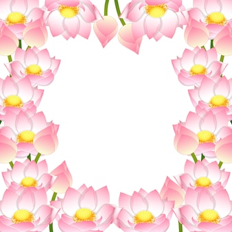 Indian lotus border