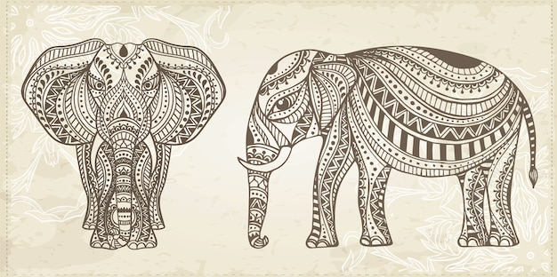 Indian ornamental hand drawn elephant illustration