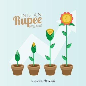 Indian rupee investment