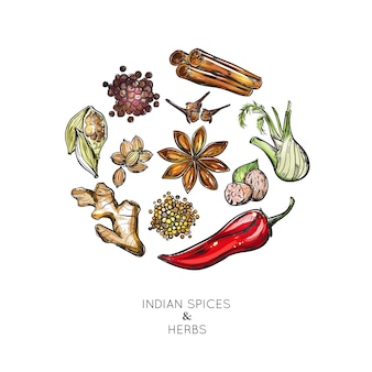 Composizione di erbe di spezie indiane