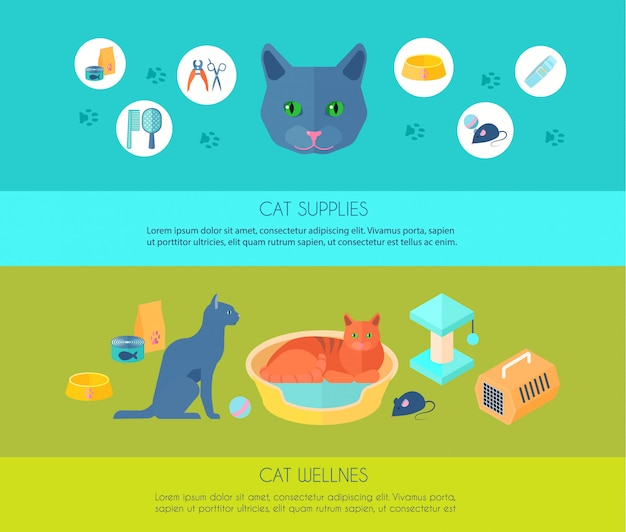 Indoor cats care information and  supplies 2 horizontal flat banners composition poster abstract isolated vector illustration