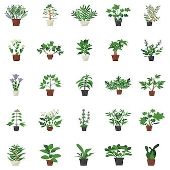 Indoor decor plant flat icons