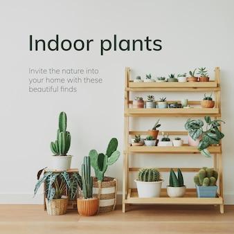 작은 houseplants와 실내 원예 템플릿 벡터