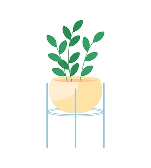 Indoor house plant semi flat color vector object. home gardening. purifying indoor air naturally. living room decoration isolated modern cartoon style illustration for graphic design and animation