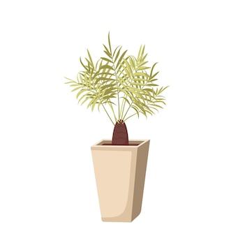 Комнатное растение в горшке. зеленые листья финиковой пальмы. интерьерный цветок. векторная иллюстрация