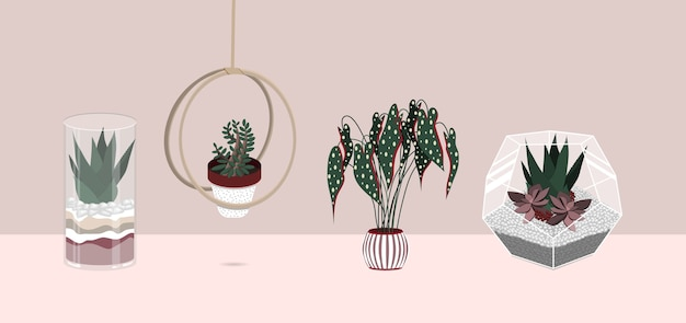 Indoor plants flat color illustrations set.