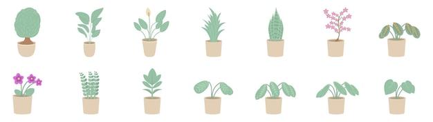 냄비에 실내 식물. houseplants 흰색 배경에 고립입니다.