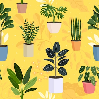屋内植物、鉢植えの植物のシームレスなパターン