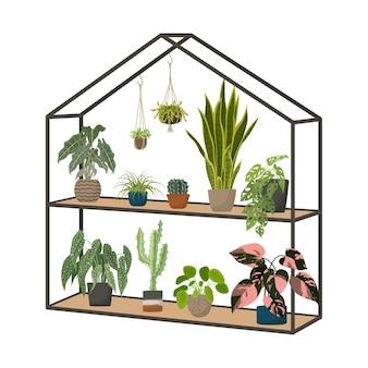 Indoor potted house plants in greenhouse urban jungle home garden cartoon vector illustration