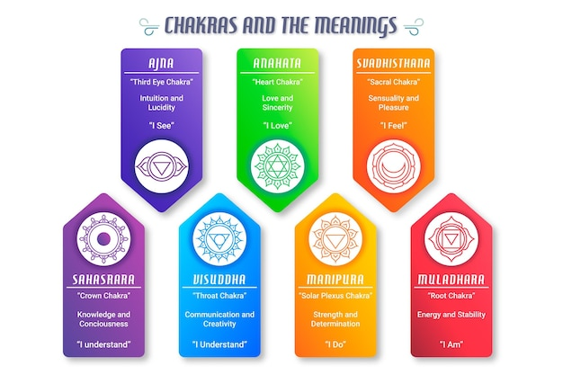 Infographic of body chakras concept