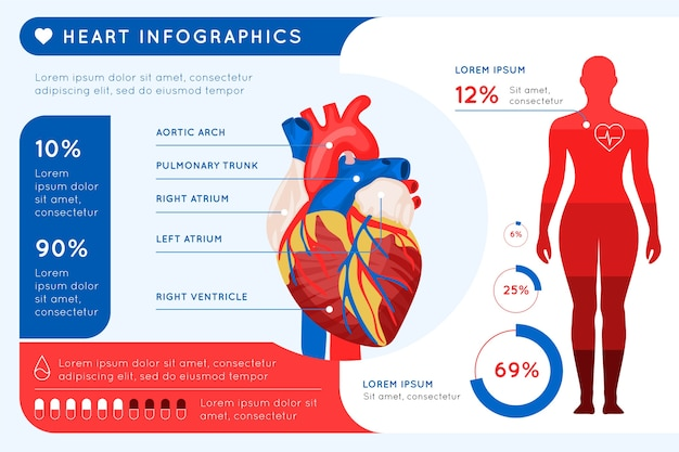 Infographic medical healthcare