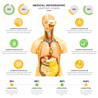Infographic medical with image