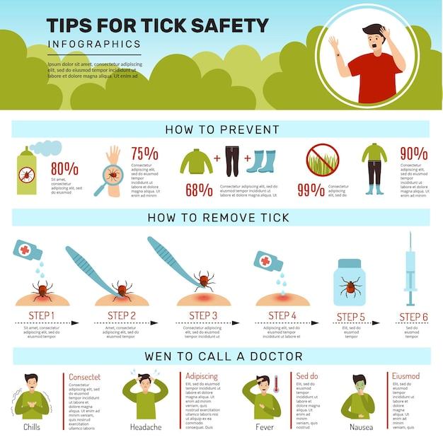Инфографика защиты человека от клеща