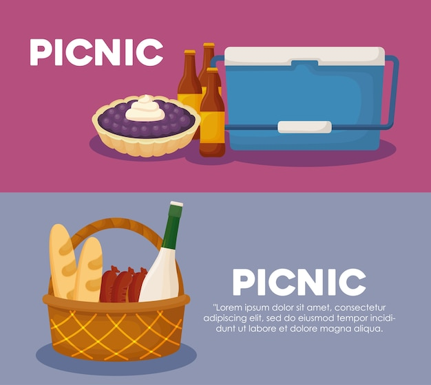 Infographic of picnic concept