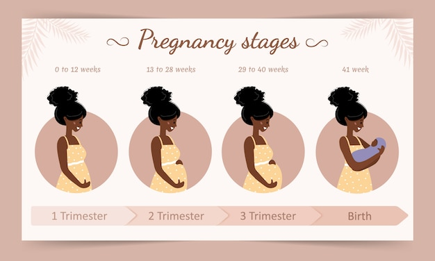 Infographic of pregnancy stages. silhouette of african pregnant woman . vector illustration in flat style.