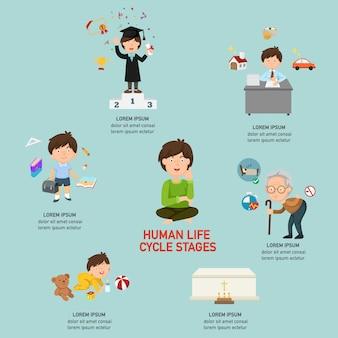 人間のライフサイクル段階infographic、ベクトル図。