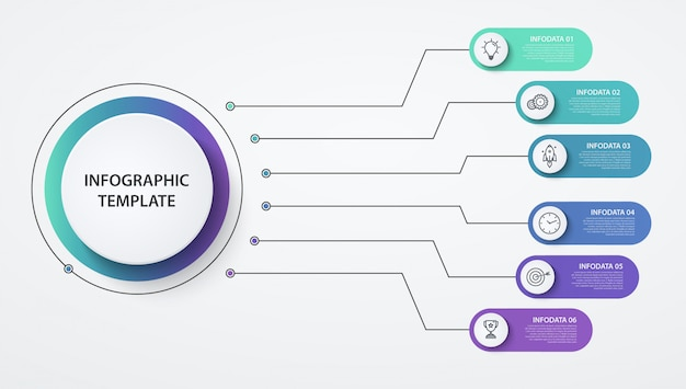 Infographics circles  options or steps. business concept, block diagram, information graph, pie chart processes.