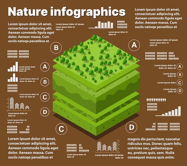 Инфографика природа геологические и подземные слои почвы под изометрическим срезом природного ландшафта