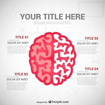 Образование infography