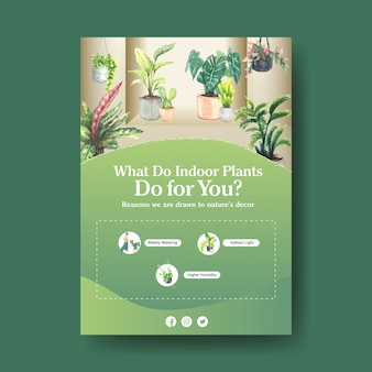 Information about summer plant and house plants template design