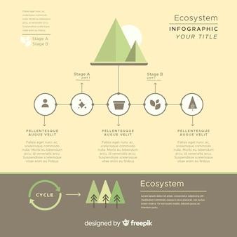 Informative ecosystem infographics concept
