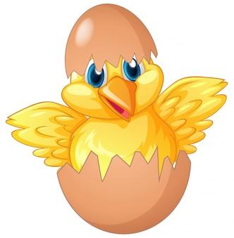 卵をing化する小さなひよこ