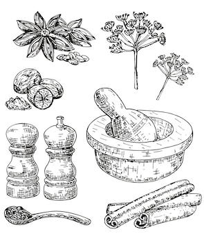 Ink hand drawn culinary herbs and spices set