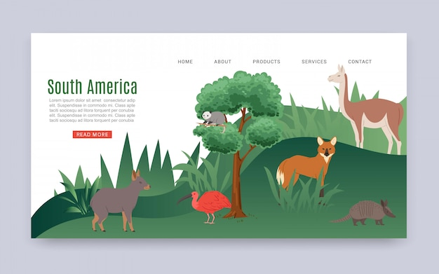Inscription south america, colorful web banner, continental jungle, american mammals, wildlife, cartoon   illustration.