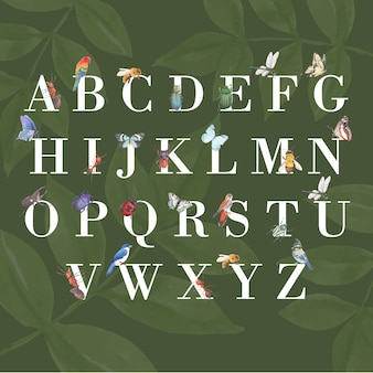 나비, 블루 제이, 꿀벌 수채화 일러스트와 함께 곤충과 조류 알파벳.