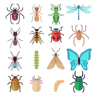 Insect flat icons set