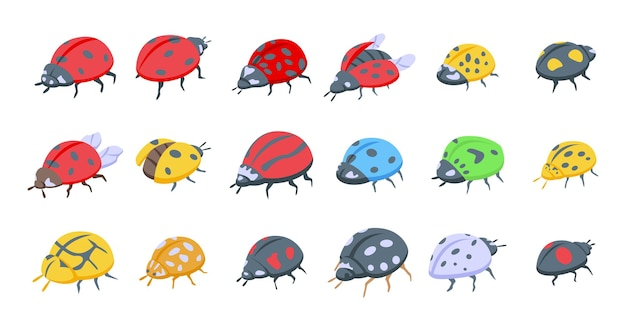 Insect ladybird icons set isometric vector. child fly