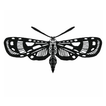 Insect with wings