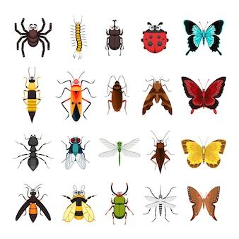 곤충 동물 컬렉션 흰색 절연