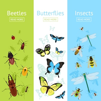 Insects banner set