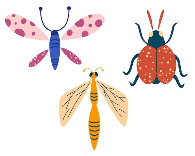 Insects set. dragonfly, butterfly, beetle. hand drawn decorative design elements. cute cartoon modern flat vector illustration.